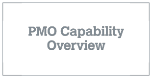 PMO Capability Overview v 6.1